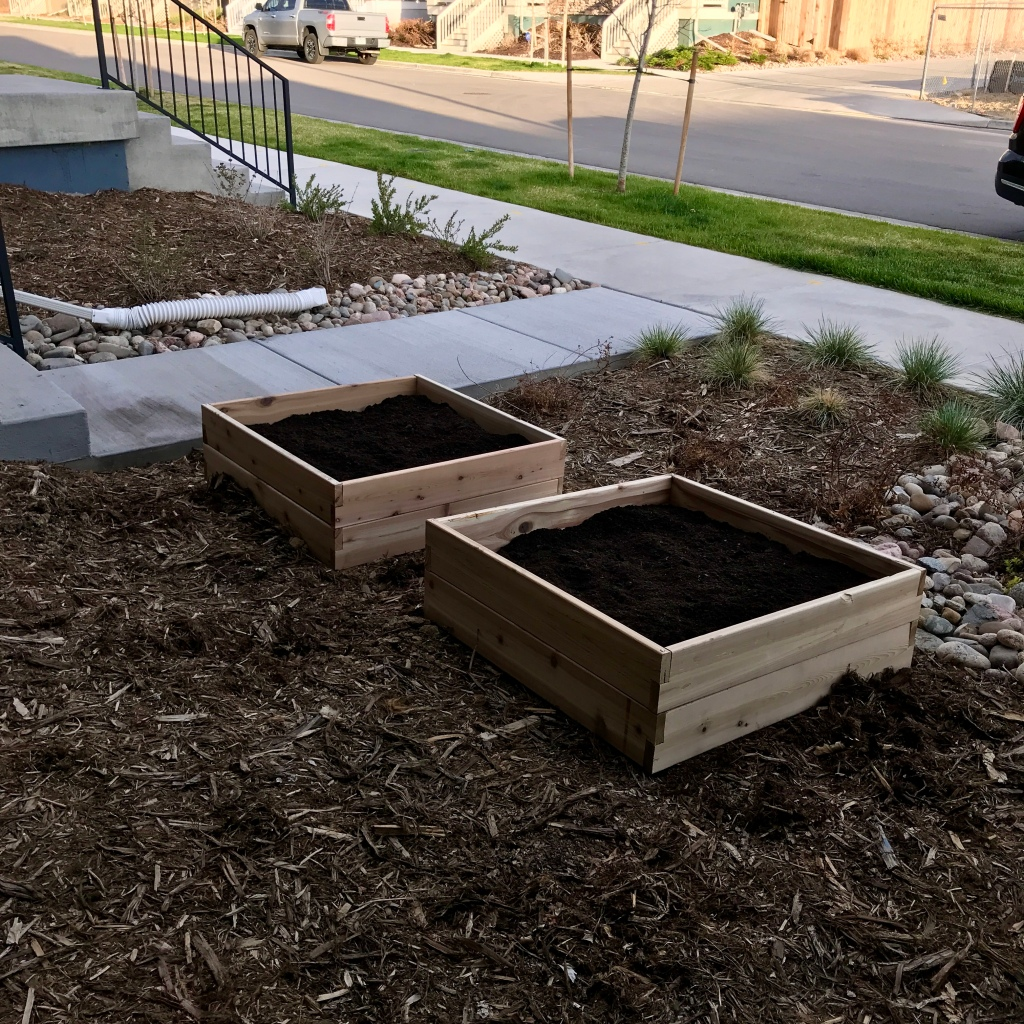 Two raised garden beds filled with soil in a front yard.